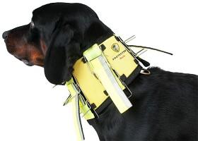 Bild på Dogtech Neck